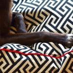 Maze Bed Details
