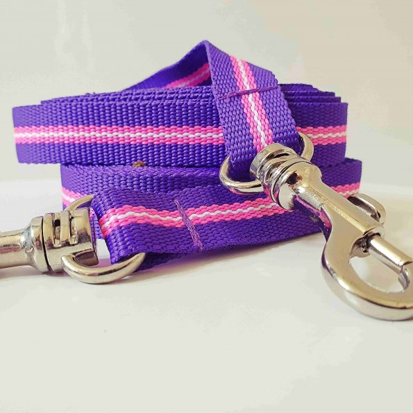 "Small Dog Leash ""Beach Life"""