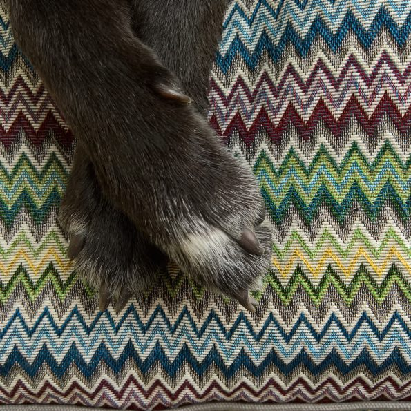 Bespoke Dog Bed Cover – Multi-color ZigZag Grey