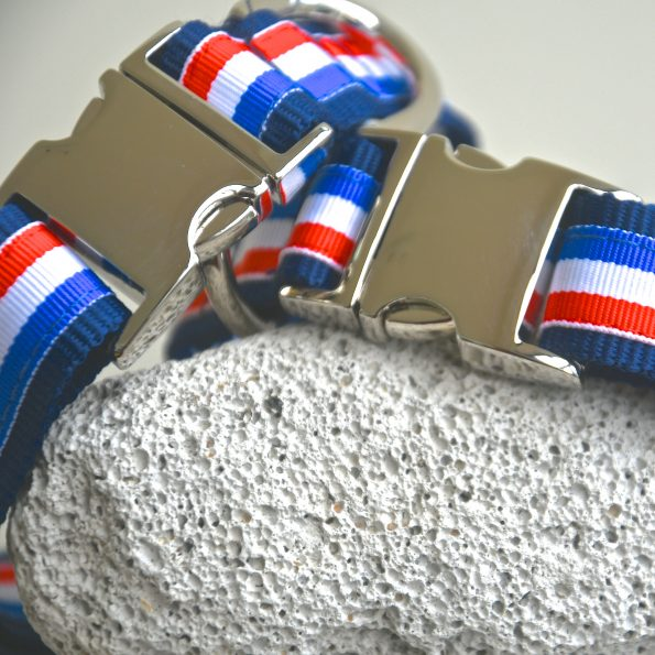 "Small Dog Collar ""Bonjour!"" (25 – 40cm)"
