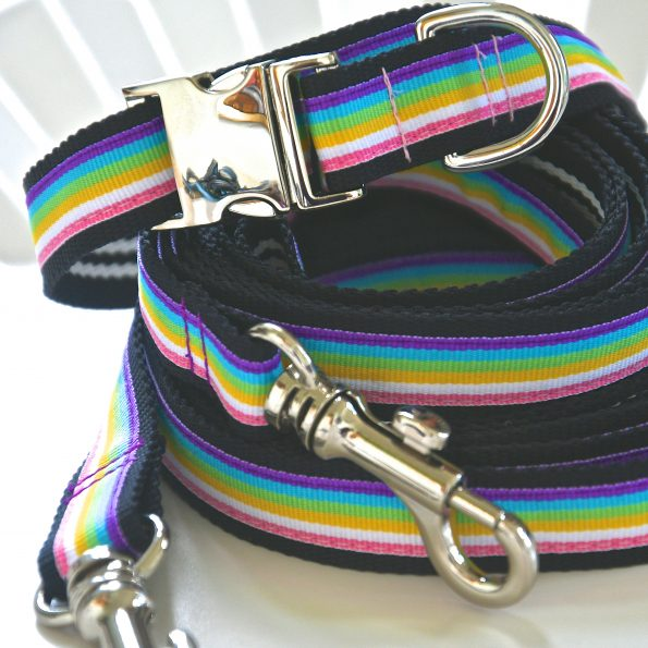 "Small Dog Collar ""Surfer"" (25 – 40cm)"
